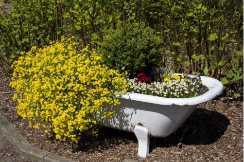 A bathtub with flowery plants in it